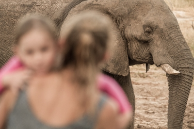 Leah and the Ellies, Elephant Sands, Botswana